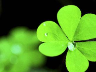 Имате ли нужда от късмет във вашия трейдинг?